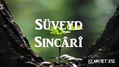 Photo of Süveyd Sincârî