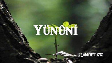 Photo of Yünûni