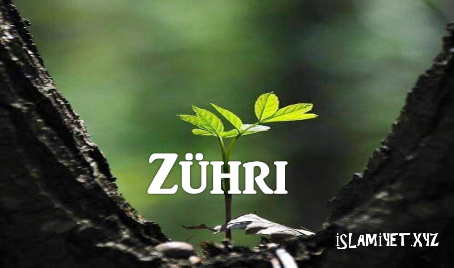 Photo of Zühri