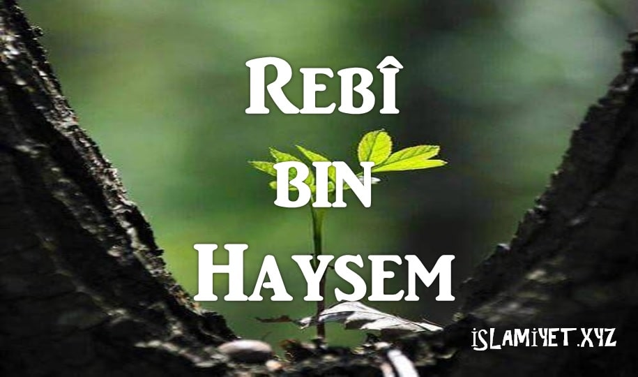 Photo of Rebî bin Haysem