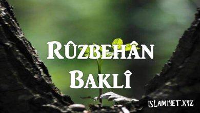 Photo of Rûzbehân Baklî