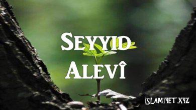 Photo of Seyyid Alevî