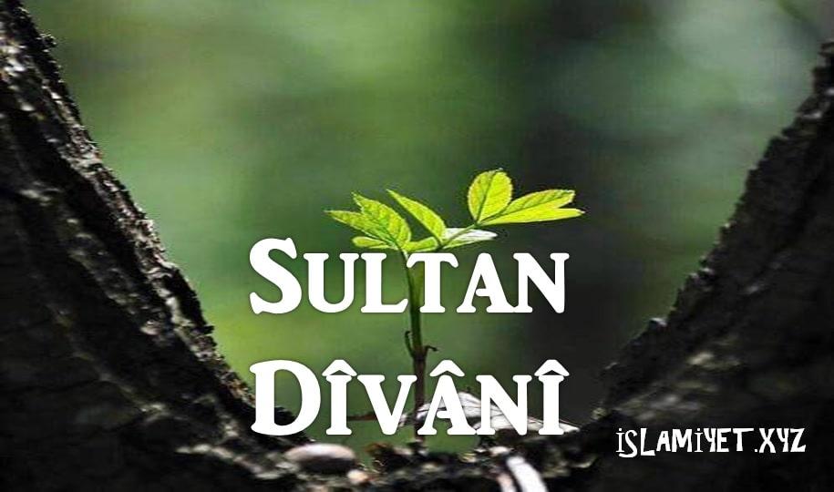 Photo of Sultan Dîvânî
