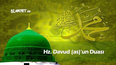 Photo of Hz. Davud (a.s)'un Duası