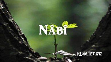 Photo of Nâbî