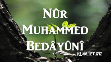 Seyyid Nûr Muhammed Bedâyûnî hayatı