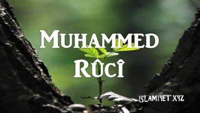 Photo of Muhammed Rûcî