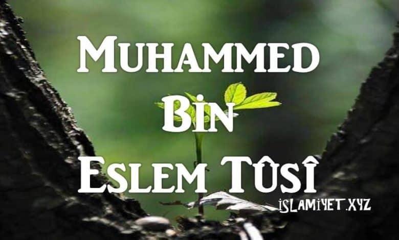Photo of Muhammed Bin Eslem Tûsî