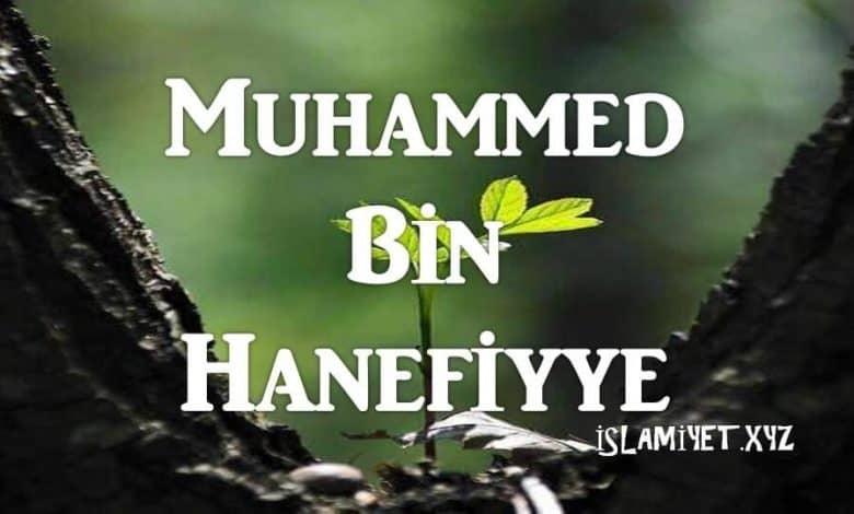 Photo of Muhammed bin Hanefiyye