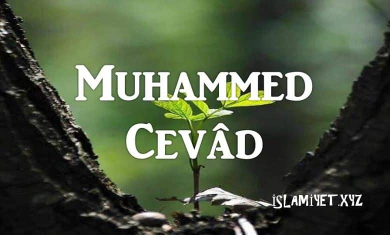 Photo of Muhammed Cevâd (9.imam)